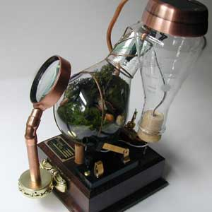 Terrarium - Lightbulb Terrarium by Steamed Glass